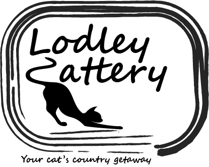 Lodley Cattery - luxury cattery in Cheshire